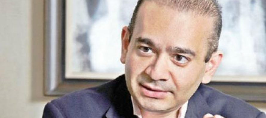 Nirav Modi rejigs top management of his companies, hires American citizen as director