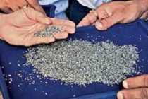 Diamantaires want direct sale of roughs in India