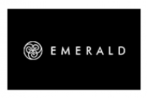 IBM and Emerald Jewellery partner for AI app